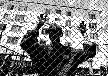 Амнистия 2016 в Украине откладывается