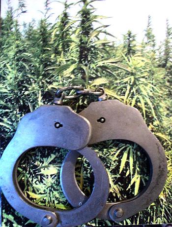 Студентку Х. задержали с наркотиками и за распространение видеопродукции, пропагандирующей культ жестокости и насилия