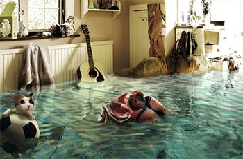 Порядок защиты прав в случае затопления квартиры и возмещение ущерба