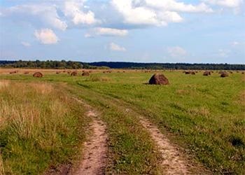 Как украинцам можно бесплатно получить в пользование земельный участок